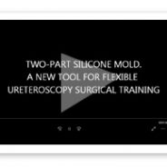 Two-part silicone mold. A new tool for flexible ureteroscopy surgical training
