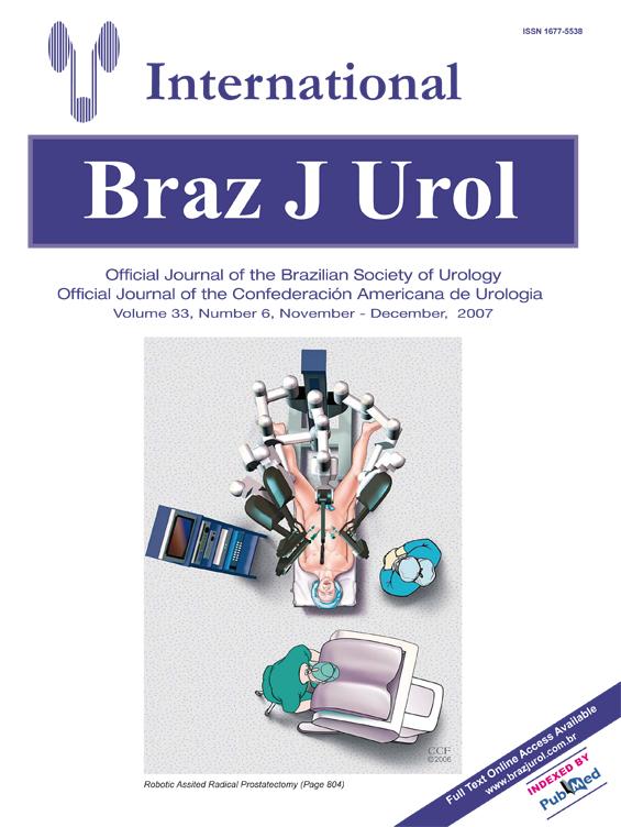 Vol. 33 N. 06, 2007