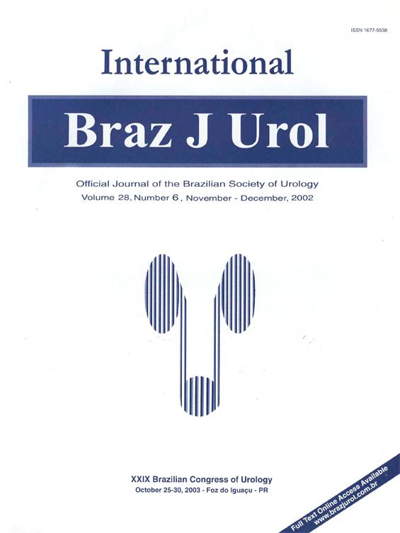 Vol. 28 N. 06, 2002