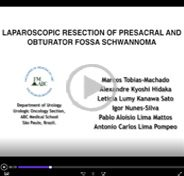 Laparoscopic resection of prescral and obturator fossa schwannoma