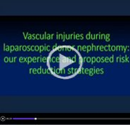 Vascular injuries during laparoscopic donor nephrectomy and proposed risk reduction strategies