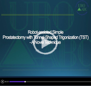 Robot Assisted Simple Prostatectomy With Tunnel Shaped