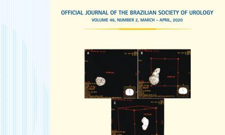 Vol. 46 N. 02, 2020