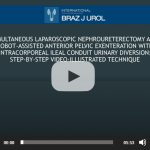 Simultaneous laparoscopic nephroureterectomy and robotassisted anterior pelvic exenteration with intracorporeal ileal conduit urinary diversion: step-by-step video-illustrated technique