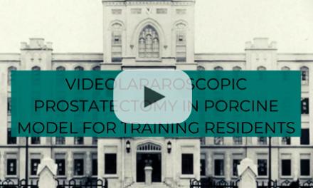 Videolaparoscopic prostatectomy in porcine model for training residents